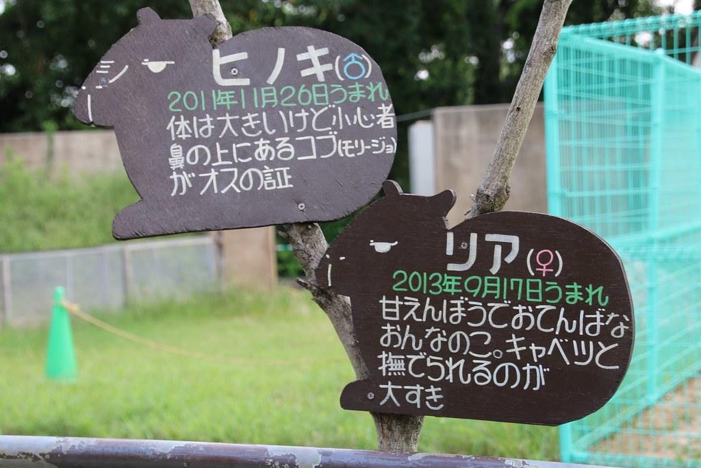 大牟田市動物園_20150821