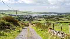Conor Hill road and #Dingle town