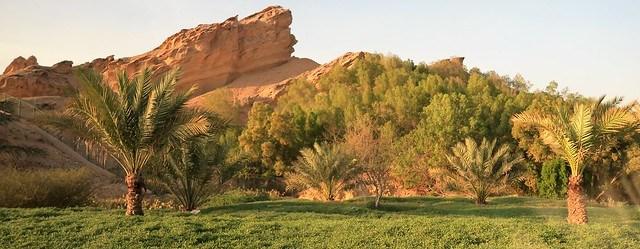 mubazzarah park with jebel hafeet