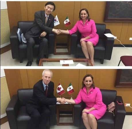 El país fortalecerá relaciones con Canadá, Indonesia y Corea: SRE