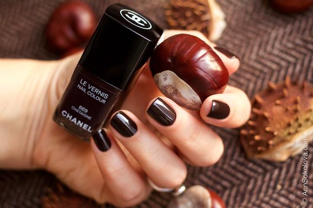 06 Chanel Le Vernis 669 Chataigne Ann Sokolovs swatches