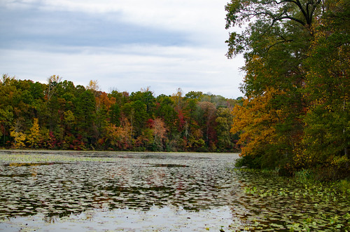 Berry Mill Pond-002