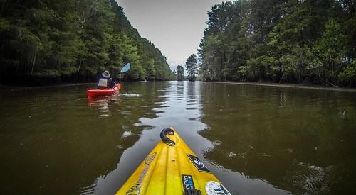 Sparkleberry Swamp with LCU-157