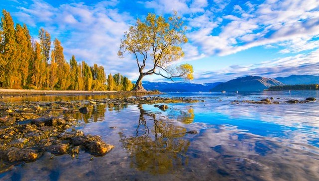 Lake Wanaka - New Zealand Travel Destinations
