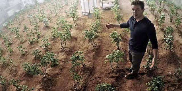 Matt damon Potato Farms