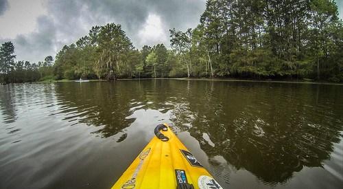 Sparkleberry Swamp with LCU-166