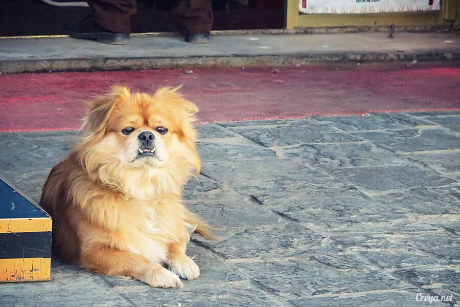 2015.12.09 | Tibet 西藏踢北去 | 尋找藏人真正的拉薩中心,被信仰力量震撼的大昭寺與舊城區 02.jpg