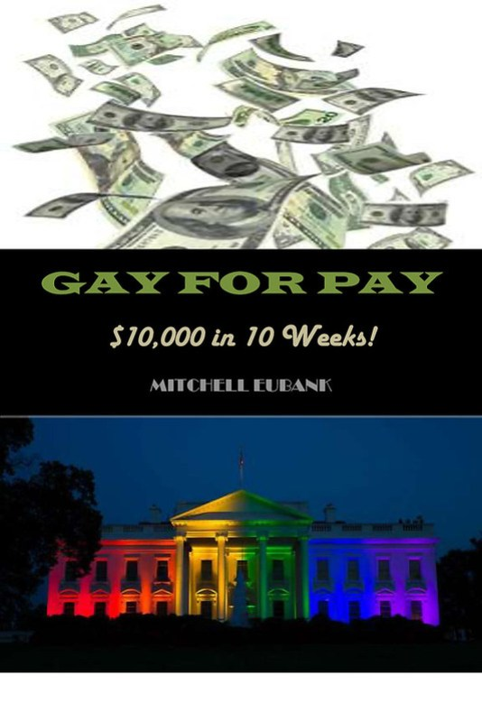 "Cover for ""Gay for Pay"""