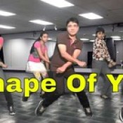 Ed Sheeran - Shape of you dance | video | cover | choreography | Best dance on Shape of you