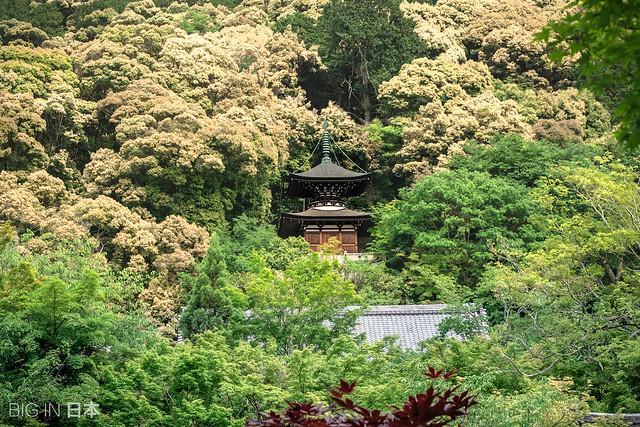 Pagoda del Eikan-do