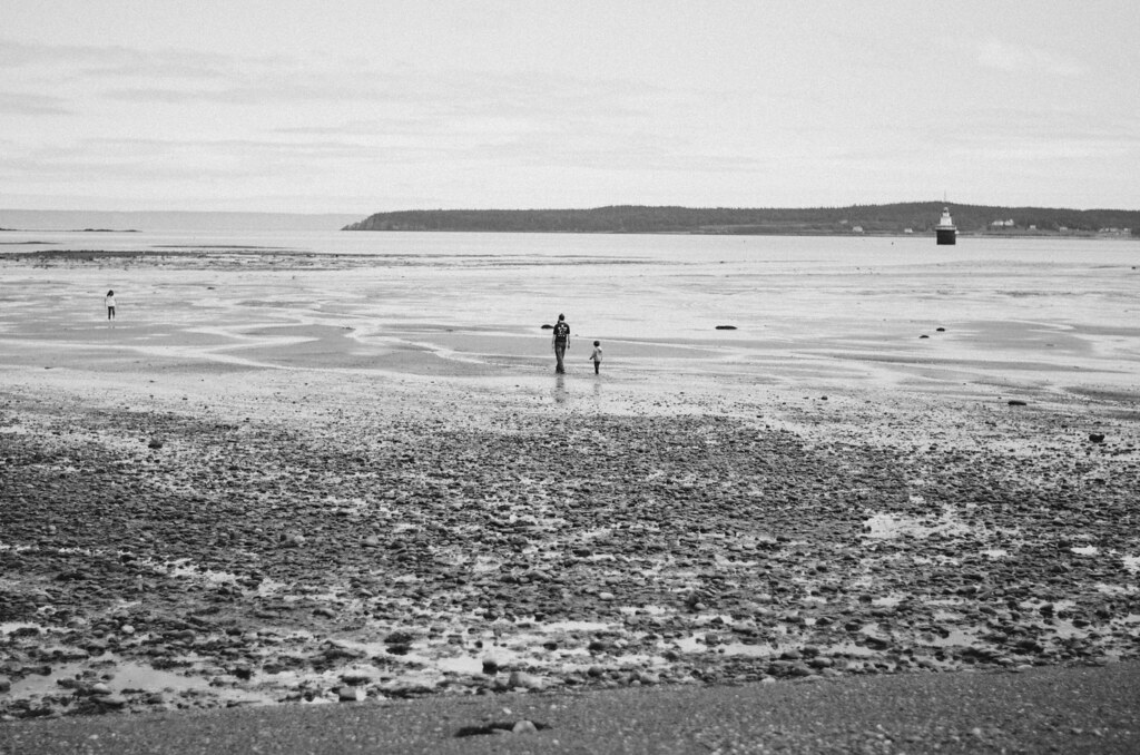Lubec, Maine 2015 20