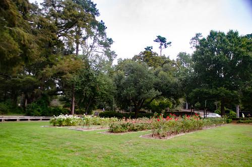 Edisto Gardens