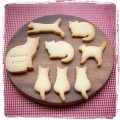 * にゃんこクッキー焼きました。 ショートブレッド生地で サクサクです♪ #クッキー #にゃんこクッキー #猫クッキー #ショートブレッド #wakabakobo