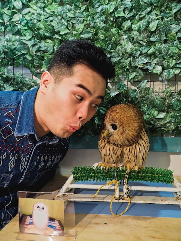 Lucky-Owl-Cafe-Osaka-15