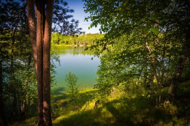 Minnesota View