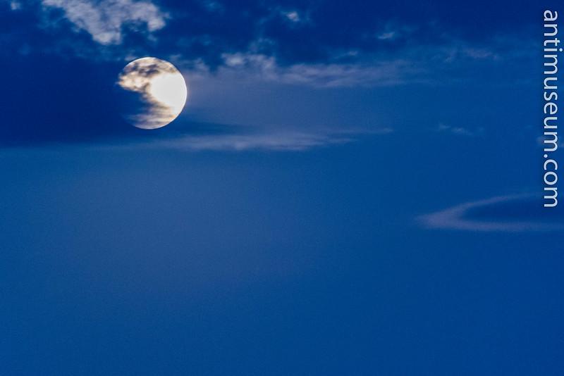 15-lune-dubois-09-2015-0758.jpg