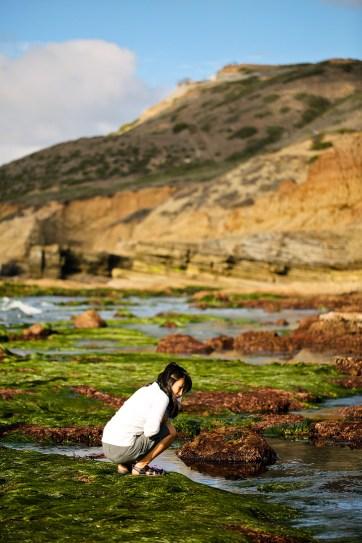 Cabrillo San Diego Tide Pools.