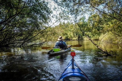 Savannah River Paddling-054