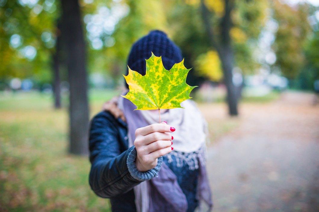 Imagen gratis de una chica sosteniendo una hoja
