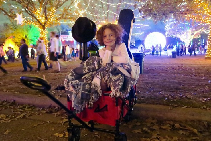 Anais in a cart