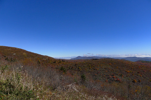 Blue Ridge Parkway in Autumn-39
