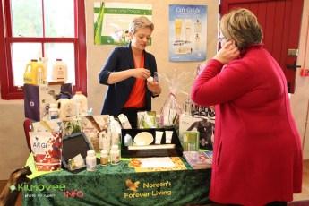 Kilmovee Craft Fair 2015 (23)