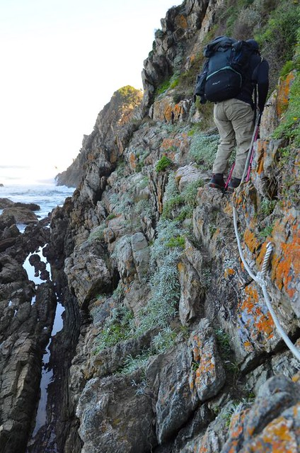 Day 4 rope bridge after bloukrans otter trail