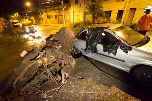 Chuva na madrugada alaga ruas e derruba árvores em SP