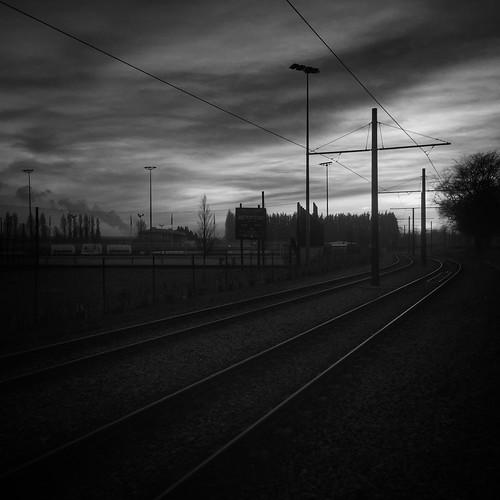24/365 Tracks