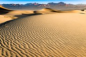 Morning at Mesquite Dunes