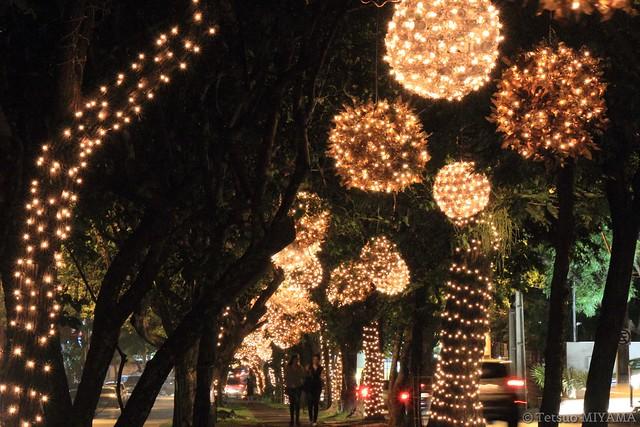 Navidad,Av.Boggiani,Asunción