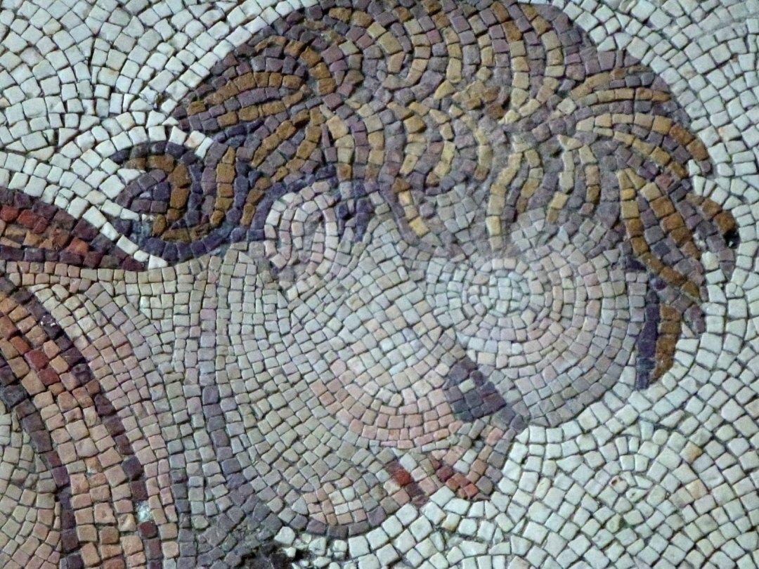 Turquie - jour 24 - Derniers instants à Istanbul - 41 - Musée des mosaïques du Grand Palais de Constantin - Büyük Saray Mozaikleri Müzesi