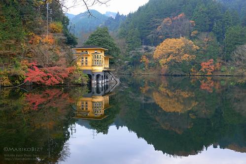 鎌北湖 20151210-DSCF8947_1