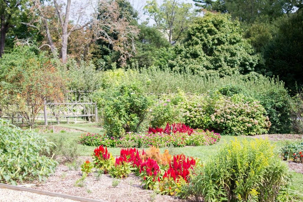 hagley-garden-food-tour-garden-color
