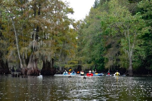 Sparkleberry Swamp with LCU-61