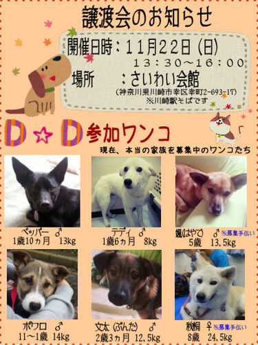 image151122-satooyakai-dd1