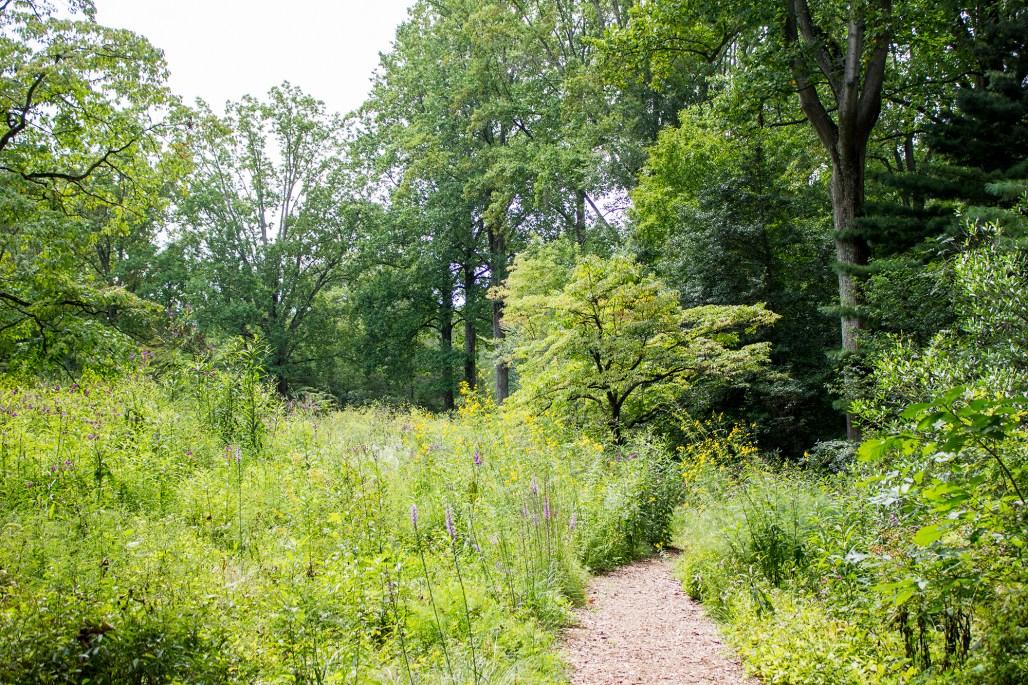 mt-cuba-gardens-delaware-path