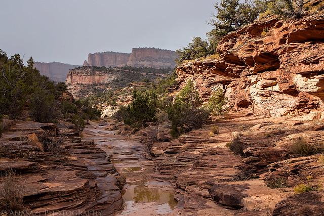 Devil's Canyon Wash
