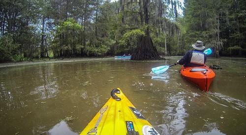 Sparkleberry Swamp with LCU-218