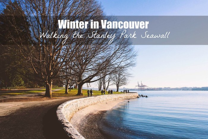 Vancouver in the Winter, winter in Vancouver, walking Stanley Park Seawall | Perogy and Panda