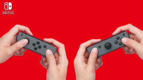 Joy-Con LRを2つのコントローラーとして遊べる