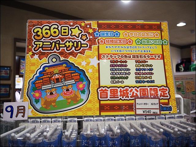 P6093095
