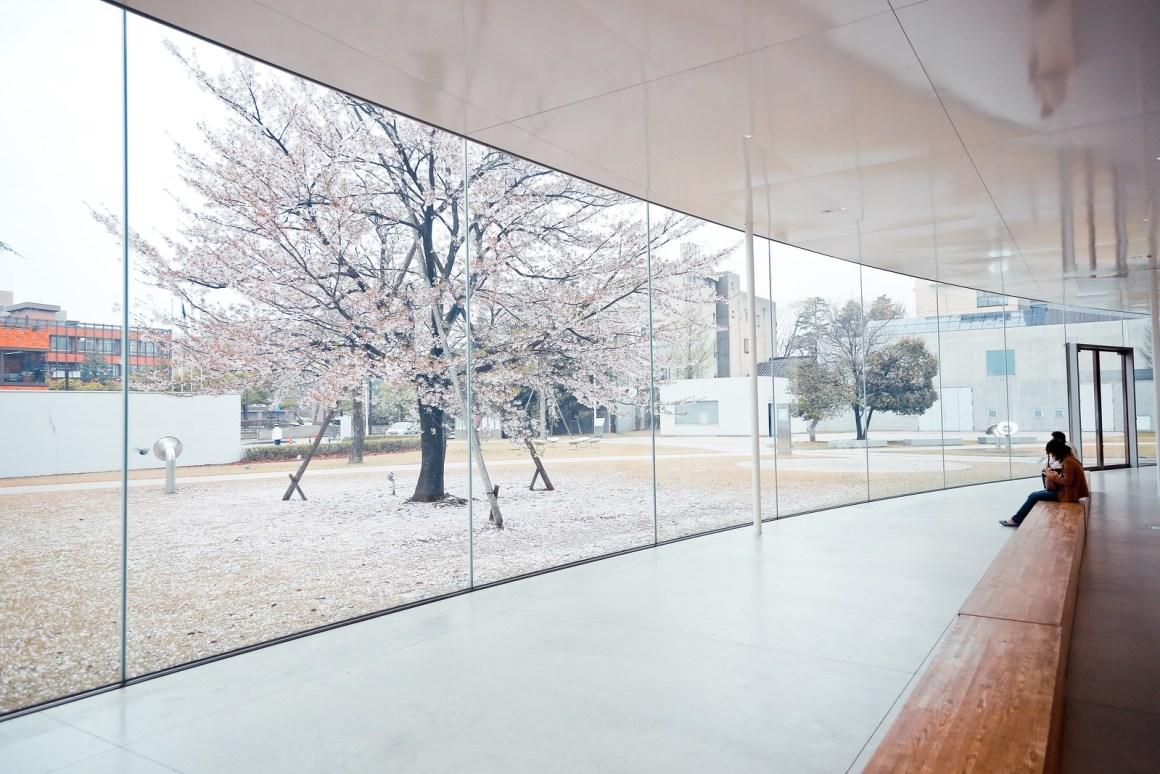 金澤旅遊景點 金沢21世紀美術館 (妹島和世 + 西澤立衛)