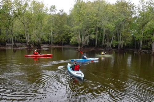 Sparkleberry Swamp with LCU-7