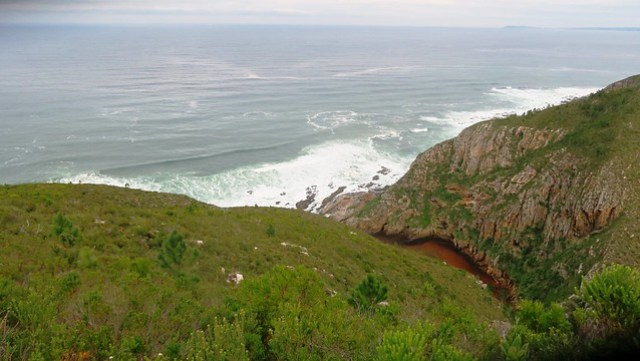 view near tip of emergency exit bloukrans otter trail