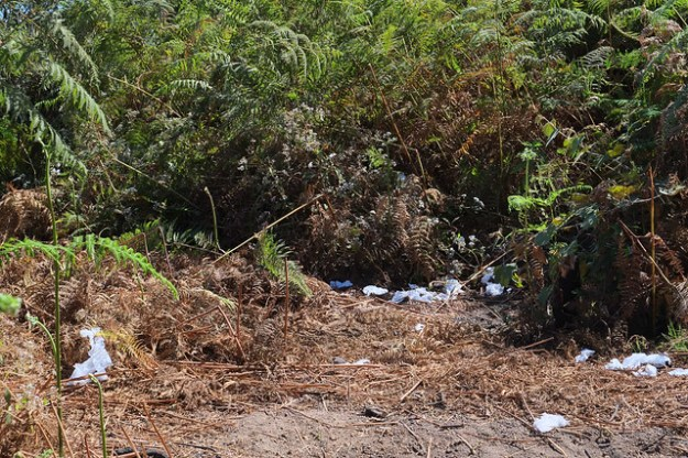 Garbage along the trail. Gunung Rinjani