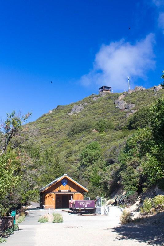 10.25. Mt Tam East peak hike