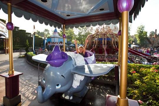 on Dumbo