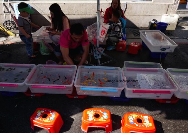 三峡 金魚