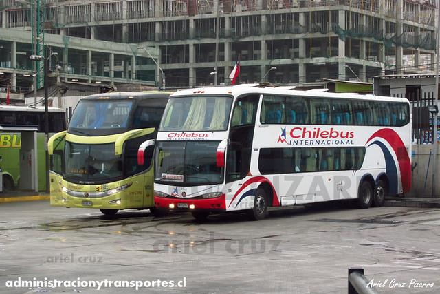 Chilebus Internacional & Romani - Antofagasta